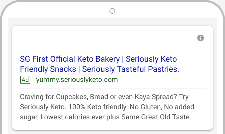 Seriously Keto Google AdWords 4